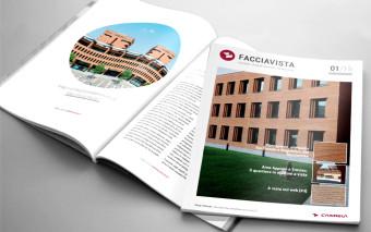 Facciavista: il primo ebook del 2015